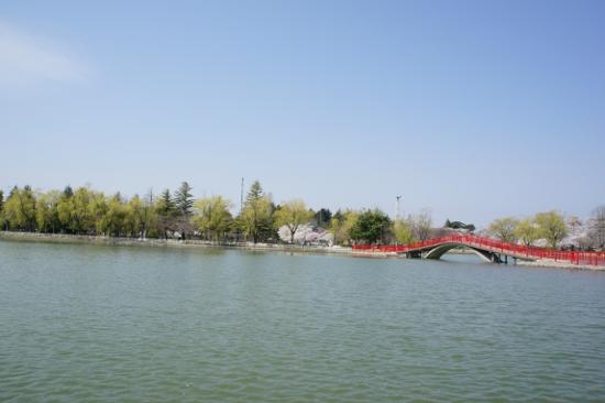 開成山公園内にある五十鈴湖(いすずこ)