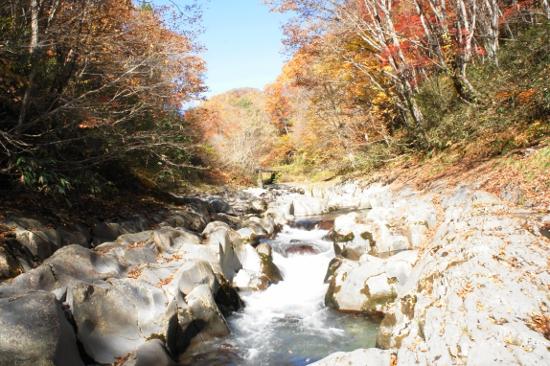 中津川渓谷の紅葉の間を流れる清流