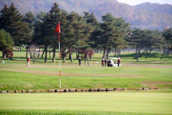 ゴルフグリーンの向こう側を走るカート